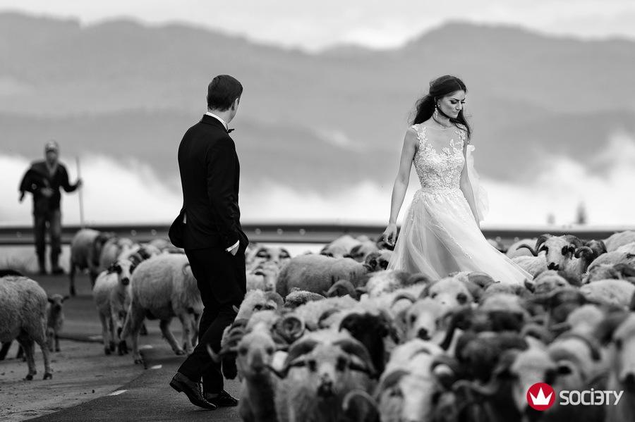 Wedding photographer society award winner