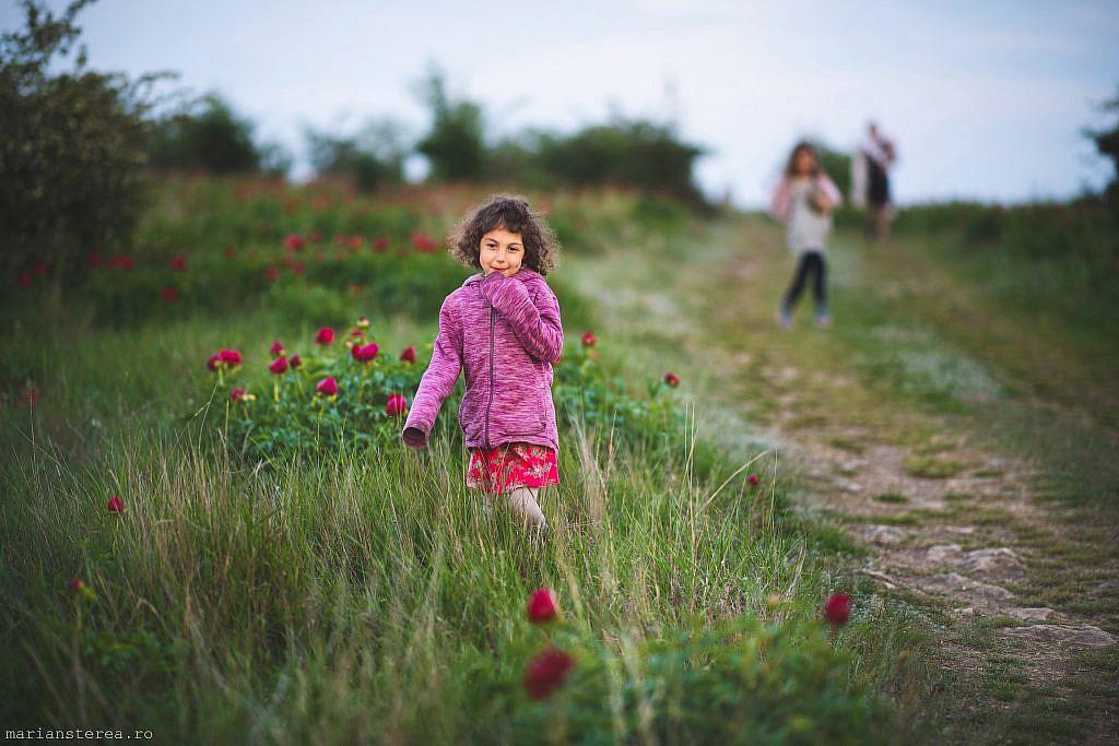 copil in lanul de bujori sedinta foto